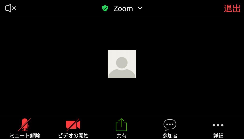 確認 zoom カメラ